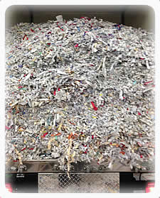 Shredded Product to be Recycled